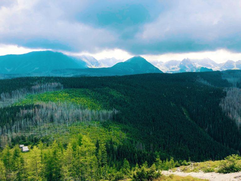 Co wybrać podczas wakacji w górach, apartament czy hotel?